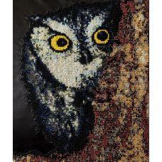 Вышивка бисером на шелке Сова, 25x31,5, FeDi