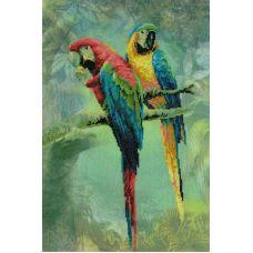 Набор для вышивания Попугаи ара, частичная вышивка, 26x40, Риолис, Сотвори сама