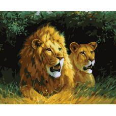 Раскраска Львы на отдыхе, 40x50, Белоснежка