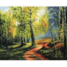 Раскраска Березовая роща, 40x50, Белоснежка