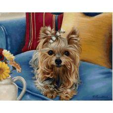 Живопись на холсте Йоркширский терьер, 40x50, Paintboy, GX4548