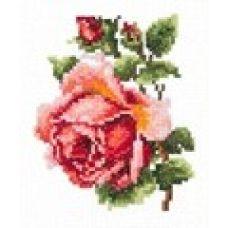 Набор для вышивания крестом Розочка, 10x11, Чудесная игла