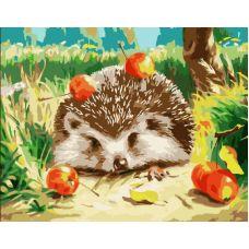 Живопись по номерам Ежик и яблоки, 40x50, Paintboy, GX6215