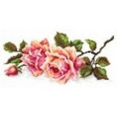 Набор для вышивания крестом Аромат розы, 25x12, Чудесная игла
