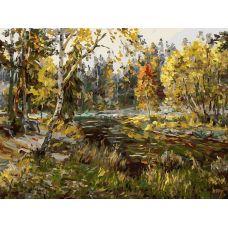 Живопись по номерам Осенний мотив, 30x40, Белоснежка