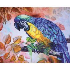 Набор для вышивания бисером Попугай, 30x25, Овен