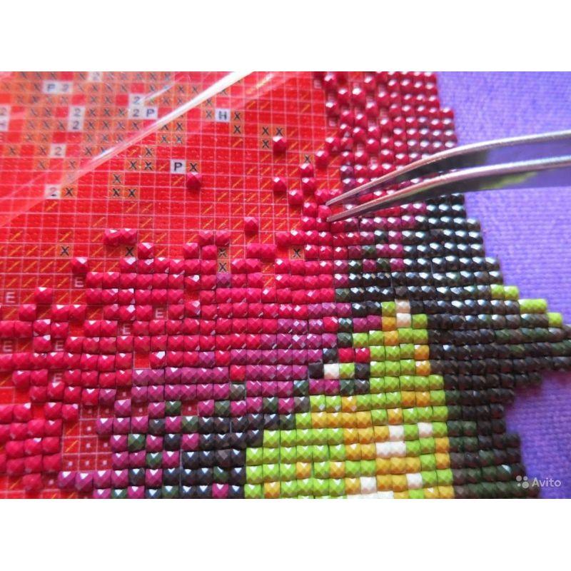 Алмазная вышивка 100-200