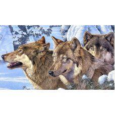 Живопись по номерам Волки, 40x50, Paintboy, GX4105