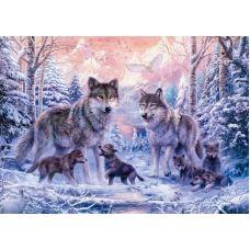 Живопись по номерам Волчье семейство, 40x50, Paintboy, GX8366
