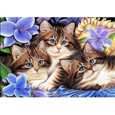 Живопись по номерам Котята в цветах, 40x50, Paintboy, GX3071