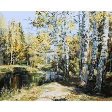 Картина по номерам Берёзы у пруда, 40x50, Белоснежка