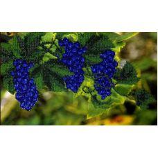 Вышивка бисером на шелке Виноградная лоза, 24x39, FeDi