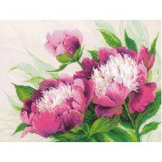 Вышивка крестиком Розовые пионы, 40x30, Риолис
