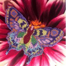 Вышивка бисером на шелке Бабочка, 22,2x22,7, FeDi