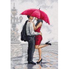 Набор для вышивания В объятиях дождя, 20x30, Овен