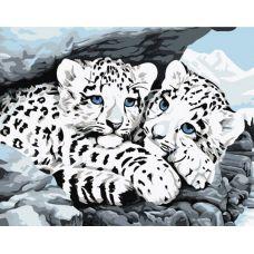 Живопись по номерам Снежные леопарды, 30x40, Белоснежка