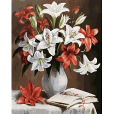 Живопись по номерам Лилии, 40x50, Белоснежка