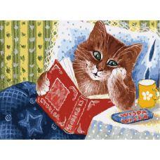 Раскраска Котик с книжкой, 30x40, Белоснежка