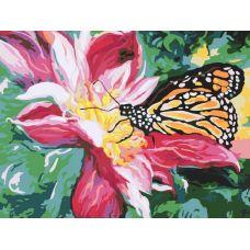 Раскраска Сладкий нектар, 30x40, Белоснежка