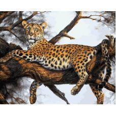 Живопись на холсте Леопард на отдыхе , 40x50, Белоснежка