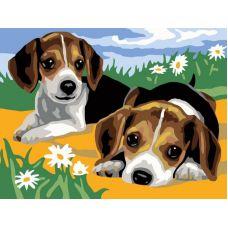 Раскраска Щенки на лужайке, 30x40, Белоснежка