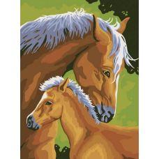 Раскраска Лошадь и жеребенок, 30x40, Белоснежка