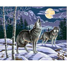 Живопись по номерам Ночные охотники, 40x50, Белоснежка