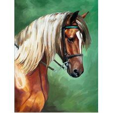 Стразы Манежная лошадь. Частичная выкладка, 59x77, Leisuretime