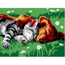 Раскраска Котенок и щенок, 30x40, Белоснежка