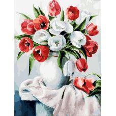 Живопись по номерам Красные и белые, 30x40, Белоснежка