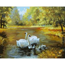 Живопись по номерам Лебеди в пруду, 40x50, Белоснежка