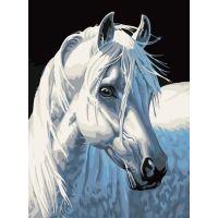 Картина по номерам Белая лошадь, 30x40, Белоснежка