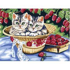 Котята в саду, Живопись на холсте, 30x40, Белоснежка