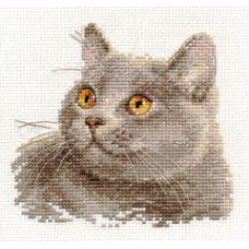 Вышивка Британский кот, 12x11, Алиса