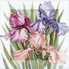 Набор для вышивания Цветущие ирисы, 36x40, Овен
