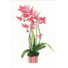 Набор для вышивания Розовая орхидея, 21x30, Риолис, Сотвори сама