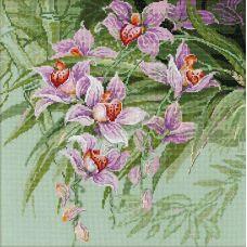 Набор для вышивания Тропические орхидеи, 34x34, Риолис, Сотвори сама