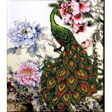 Вышивка бисером на шелке Павлин, 30x35, FeDi