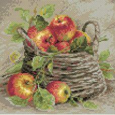 Алмазная мозаика Спелые яблоки, 27x27, полная выкладка, Риолис