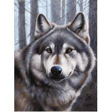 Живопись по номерам на картоне Волк, 30x40, Белоснежка