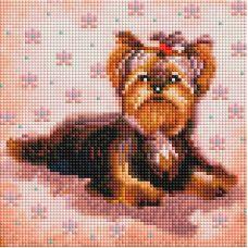 Алмазная мозаика Маленький Йорк, 20x20, полная выкладка, Белоснежка