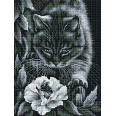 Алмазная мозаика Ночные приключения, 30x40, полная выкладка, Белоснежка