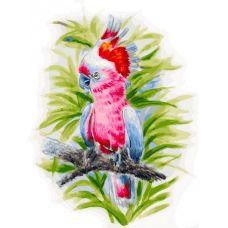 Живопись на холсте Розовый попугай, 30x40, Белоснежка