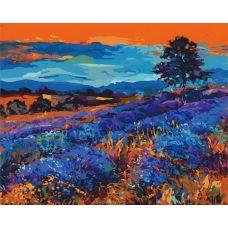 Раскраска Лавандовые поля, 40x50, Белоснежка