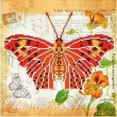 Канва с рисунком Бабочка 1, 25x25, Божья коровка
