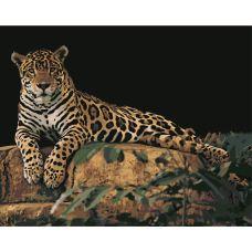 Живопись по номерам Леопард на камне, 40x50, Hobruk, HS0029