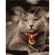 Живопись по номерам Британский кот, 40x50, Paintboy, GX21645