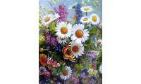 Живопись на холсте Ромашки, 40x50, Paintboy, GX33952