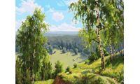 Живопись на холсте Березовая долина, 40x50, Paintboy, PK59029