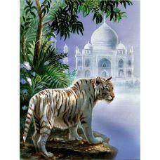 Живопись на холсте Бенгальский тигр, 40x50, Paintboy, GX4208